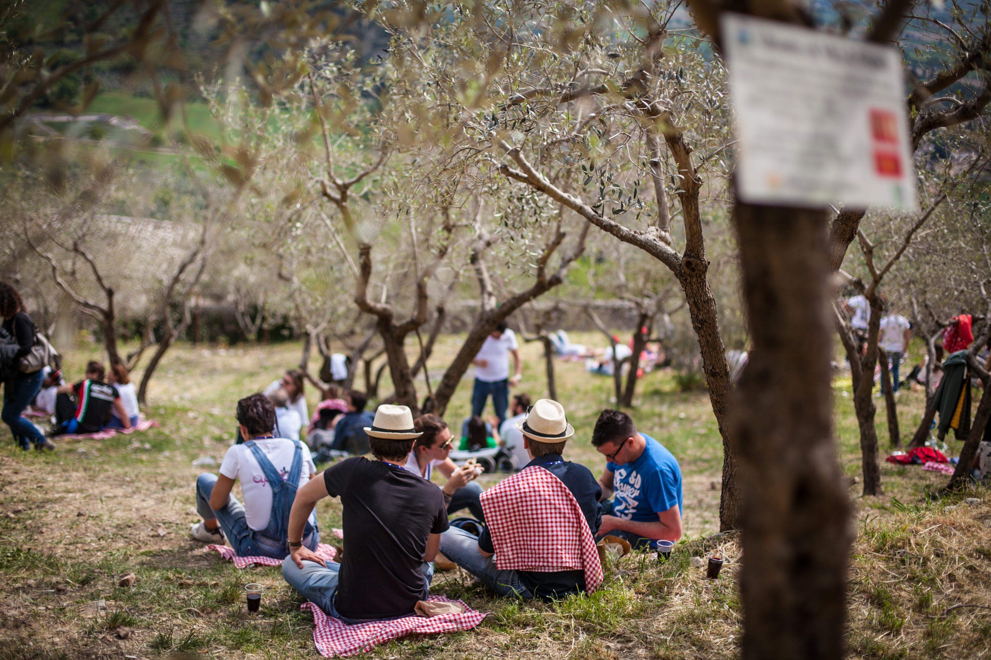 picnic-2015---trevi-umbria_24142393833_o